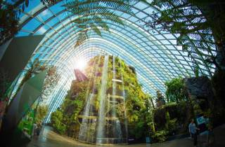 Singapur: Gardens by the Bay Online-Zugangs-Ticket