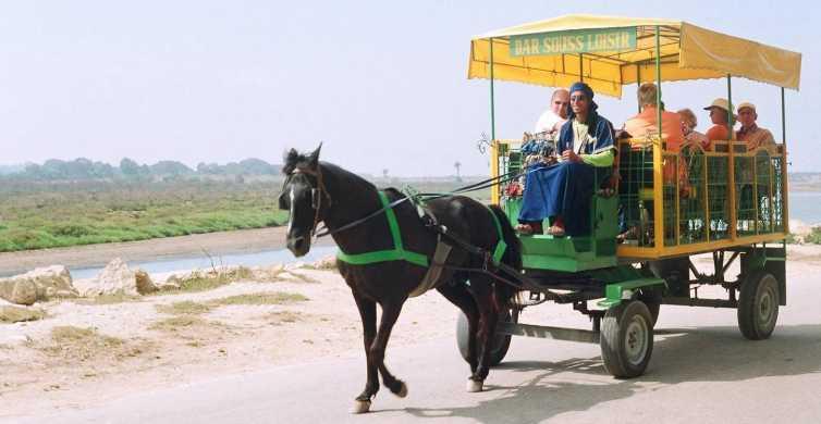 Agadir: Carriage Ride to the Medina