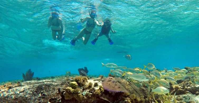 Cozumel: Private Charter Boat and Snorkel Day Trip