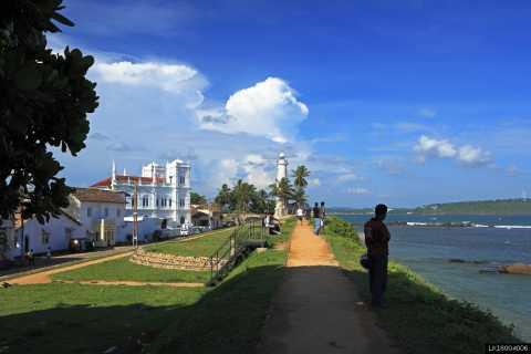Southern Sri Lanka: Sea, Sand & Marine Life 2-Day Tour