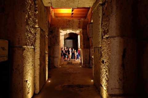 Rome: visite des souterrains du Colisée, accès prioritaire