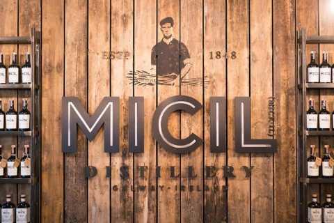 Galway: tour tradizionale della distilleria irlandese di Poitin e Gin