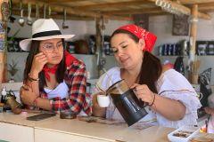 Medellín: Coffee Tour com degustações e almoço