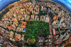 São Paulo: Excursão a Pé pela Avenida Paulista