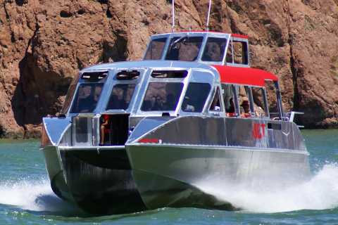 Da Las Vegas: tour in barca sul fiume Colorado River