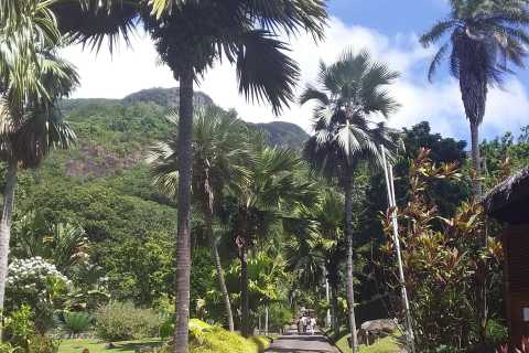 Mahé: Customizable Private Tour of Island with Driver