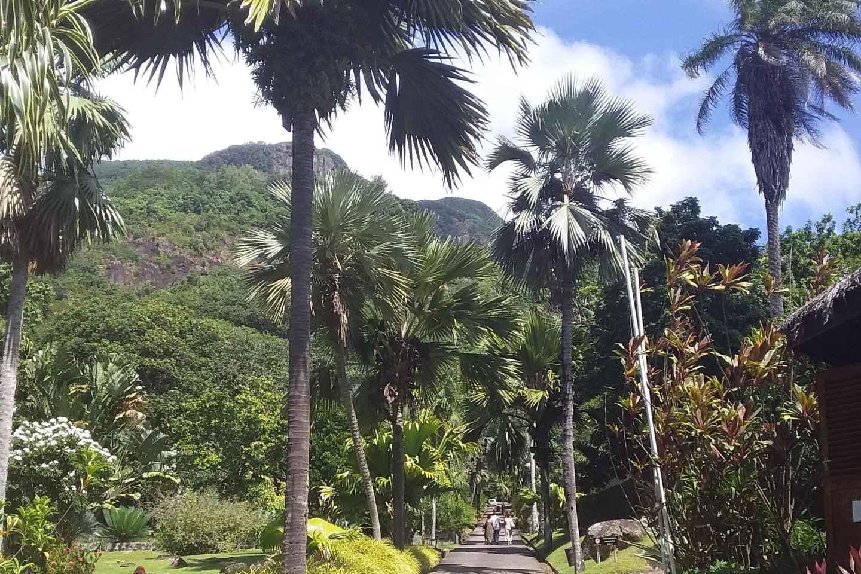 Mahé: Individuelle private Inseltour mit Fahrer