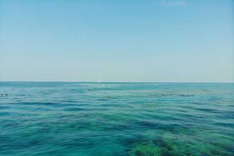 Key West: Sunset Snorkel Sail Trip con Open Bar