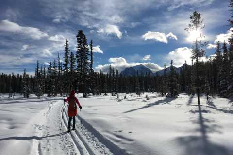 Lake Louise: Cross Country Skiing Lesson with Tour