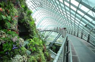 Singapur: Gardens by the Bay und S.E.A. Aquarium
