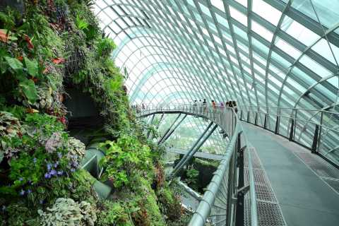 Singapore City: Gardens by the Bay and S.E.A. Aquarium