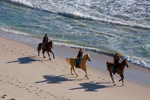 Puerto Plata: 2-Hour Horseback Ride on the Beach
