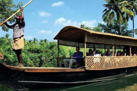 Cochin: Half-Day Backwater Village Boat Cruise with Lunch