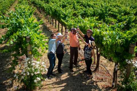 From San Francisco: Private Wine Country Explorer Tour