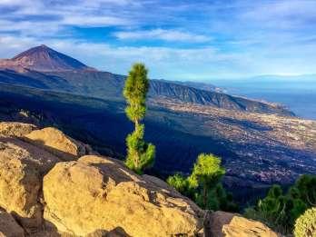 Teneriffa: El Teide & Aromen des Nordens - Landgang