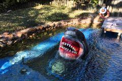 Excursão de Houston e bilhete do aquário