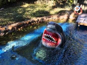 Houston: Tour und Aquarium-Ticket