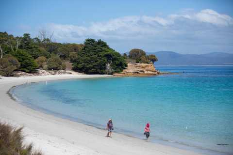 From Hobart: Maria Island National Park Active Full-Day Tour