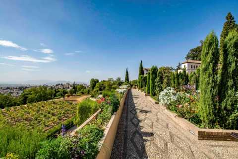 From Costa del Sol or Malaga: Granada and Alhambra Tour