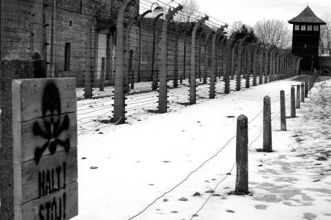 From Krakow: Auschwitz-Birkenau Group Guided Tour
