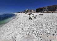 Pisa: Fahren Sie mit dem Fahrrad auf einer selbst geführten Tour ans Meer