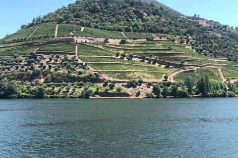 Porto: Douro Valley Vineyards, Wine Tasting, Cruise, & Lunch