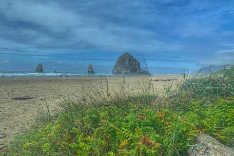 Oregon Coast Day Tour: Cannon Beach and Haystack Rock
