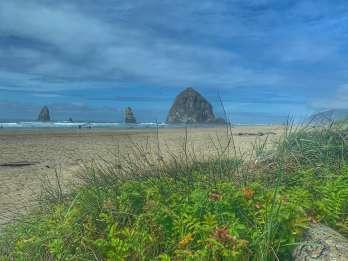 Ab Portland: Tagestour entlang der Küste Oregons