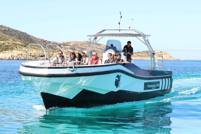 Calvi: 6-stündige Bootstour nach Scandola & Girolata