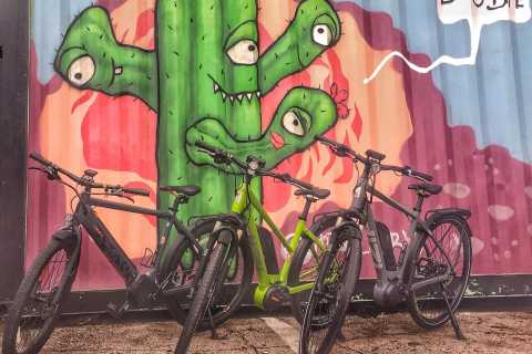 Austin: Electric Bike City Sightseeing Tour