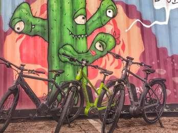 Austin: Stadtrundfahrt mit dem Elektrofahrrad