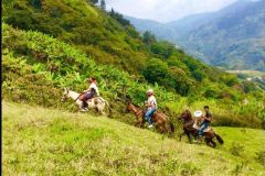 Medellín: autêntico passeio a cavalo na Colômbia