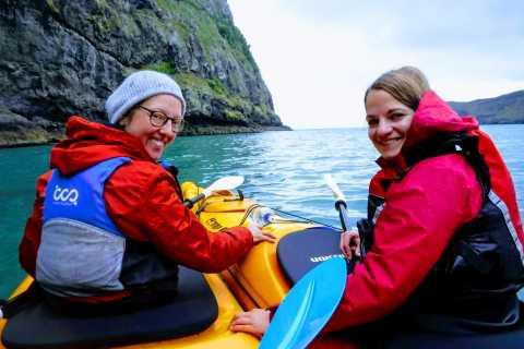 Akaroa: 3-Hour Guided Sunrise Sea Kayaking Safari
