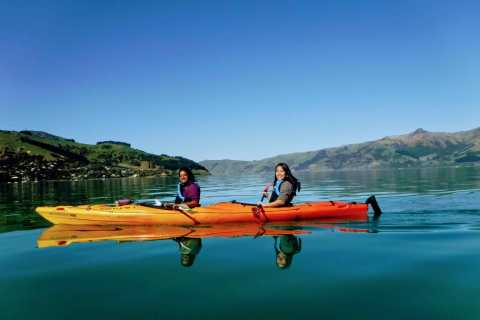 Akaroa Harbour 3-Hour Eco Tour by Sea Kayak