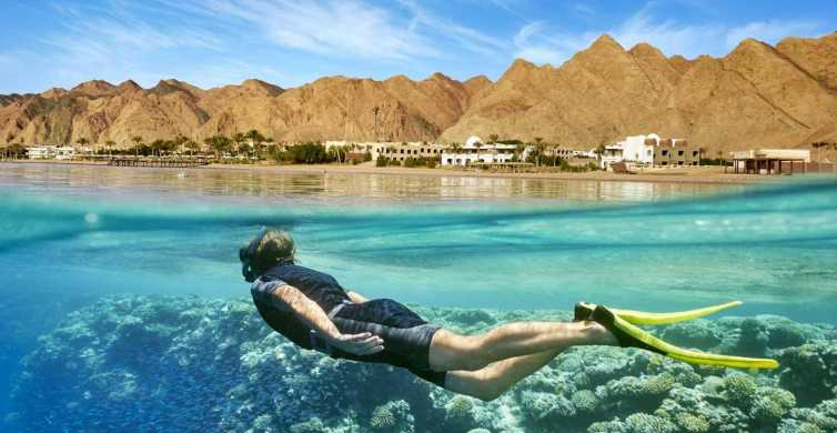 Cairo: Day Tour to the Red Sea with Lunch