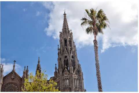 From Las Palmas: Full-Day Tour of the North