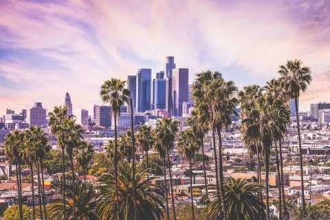 From San Diego County: Los Angeles Sightseeing Day Trip