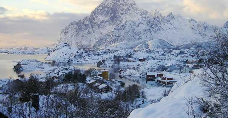 Svolvaer: Lofoten Islands 5-Hour Tour with Photographer