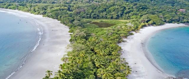 Nationaal park Manuel Antonio: rondleiding van 3 uur