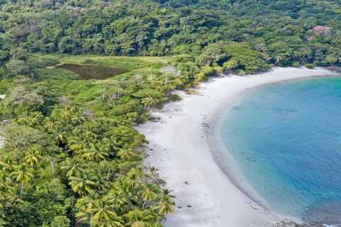 Manuel Antonio National Park: 3-Hour Guided Tour