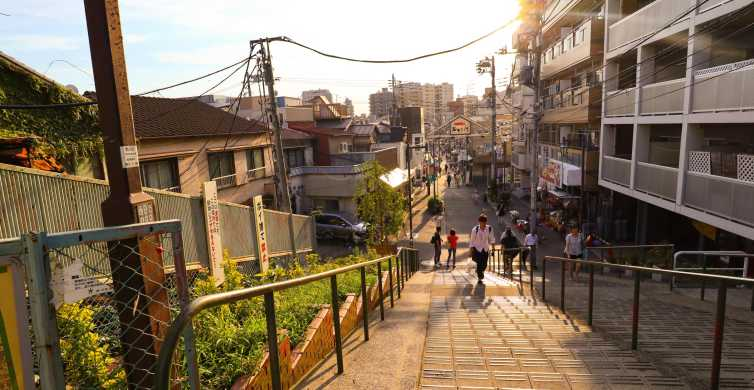Yanaka District: Historical Walking Tour in Tokyo's Old Town