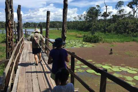 From Manaus: Amazon River Half-Day Tour