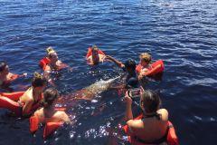 De Manaus: Excursão de Meio Dia pelo Rio Negro