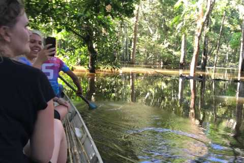 From Manaus: One-Day Amazon Jungle Experience