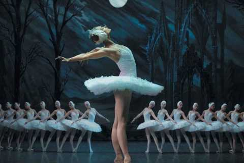 St. Petersburg: Swan Lake Ballet Admission Ticket
