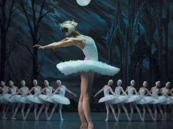 St. Petersburg: Schwanensee Ballett-Ticket