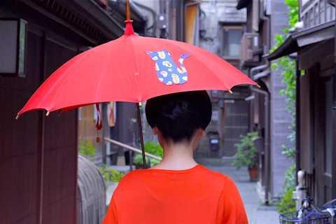 Kanazawa: Half-Day Private Guided Tour