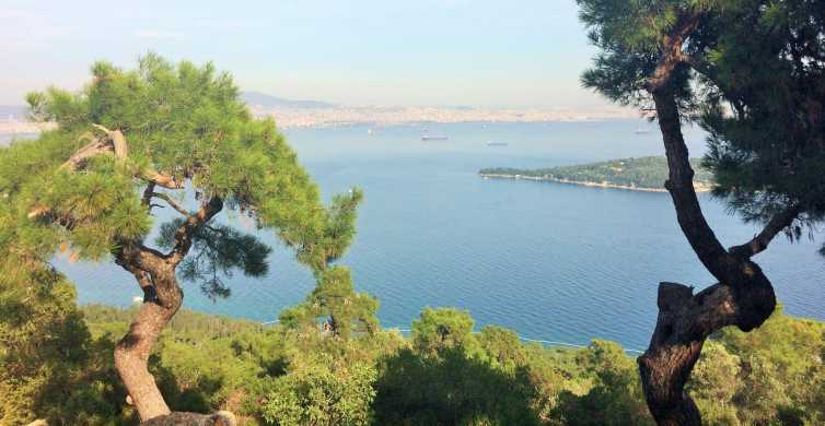 Istanbul: Day Trip to the Princes' Islands
