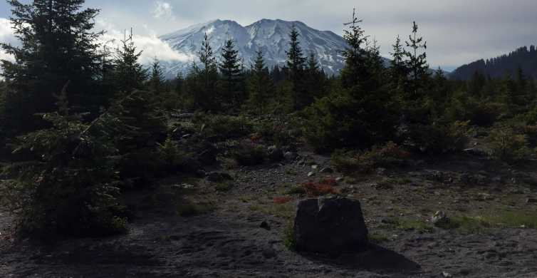 Portland: The Mt. St. Helens Adventure Tour