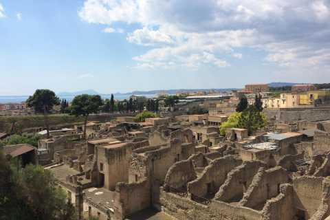 Pompeii & Herculaneum Private Skip-the-Line Tour with Ticket